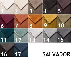 Attēls  1. kategorija SALVADOR